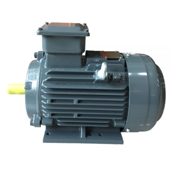 teco Food mounted cast iron frame motor