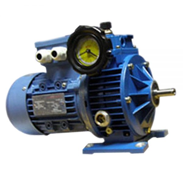speed variators-tk